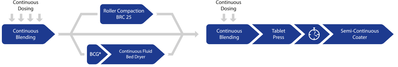 Figure: Continuous manufacturing production process